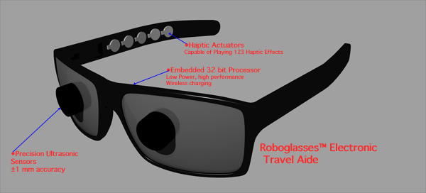 Roboglasses Picture